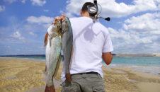 Las Mejores Técnicas de Pesca Surf Casting