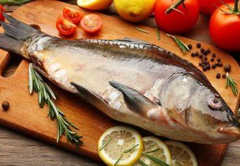 cocinar capras pescado españa